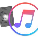 Revert the Programs section in iTunes